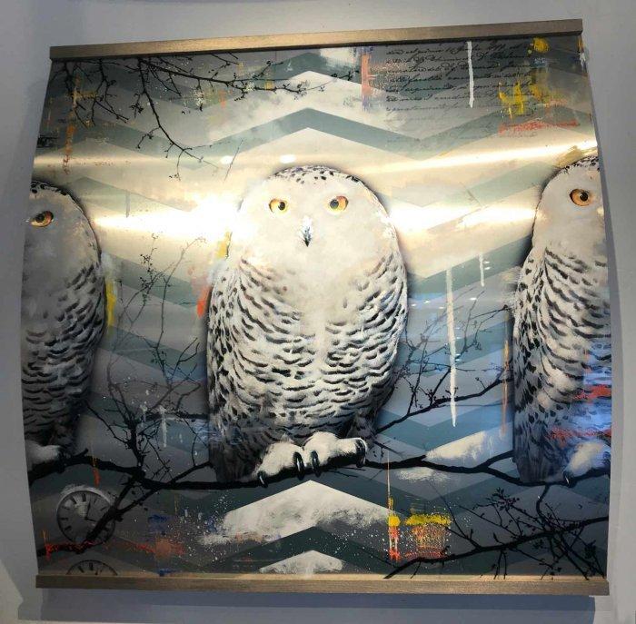 Cary Owl